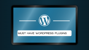 Set of WordPress plugins that are a must for every WordPress site you build