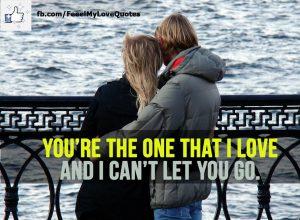 You're the one that I love and I can't let you go.