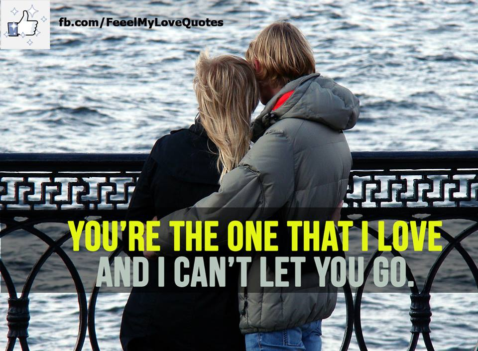 You're the one that I love and I can't let you go.